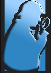 Detective privado para probar ruidos molestos