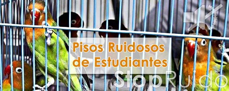 Pisos Estudiantes Ruidosos Madrid